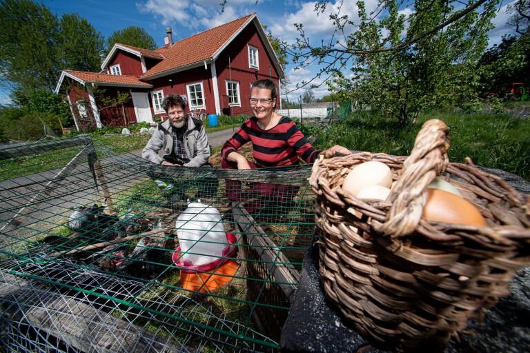 Besök och upplev en gårdsbutik