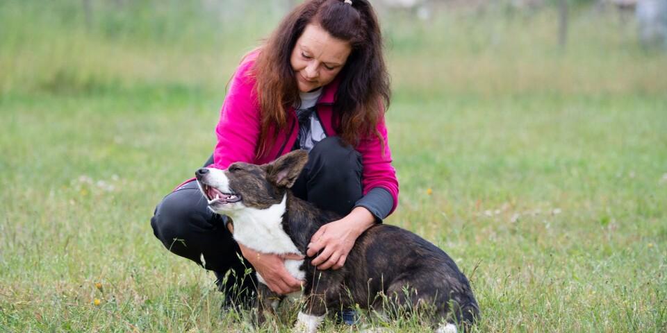 """""""Det är ett privilegium att få ta hand om hundarna här"""", säger Vanja Andersson"""", säger Vanja Andersson."""