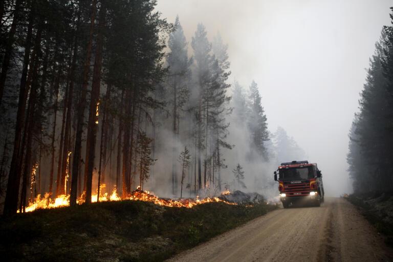 Många lärdomar har dragits sedan skogsbränderna 2018. Arkivbild.