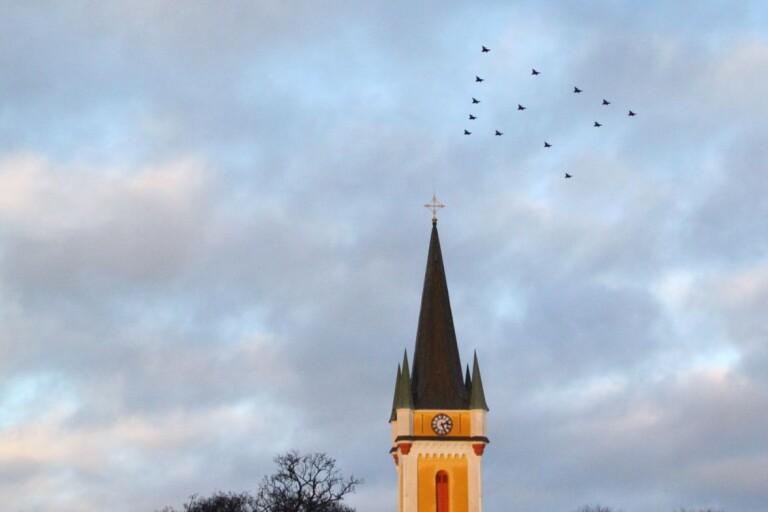 Klart: Det blir julgransflyg även i år
