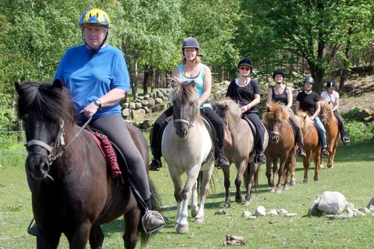 Debatt: Hästar får landsbygden att leva