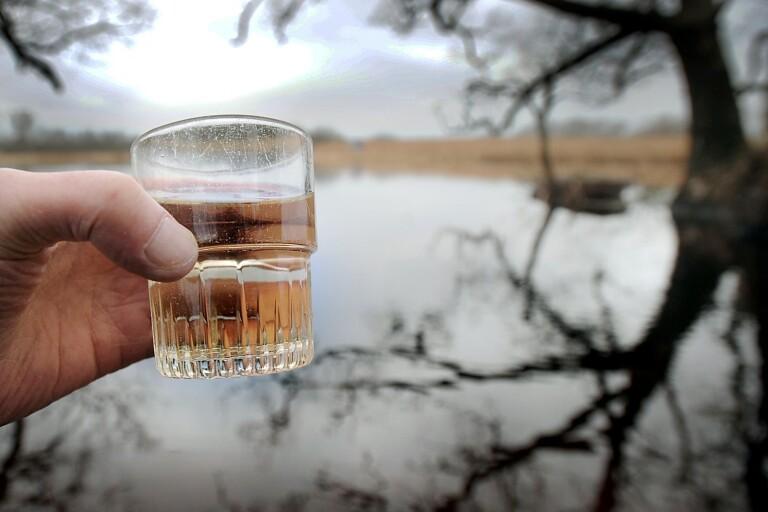 Åtgärder i skogen kan förhindra att sjöar blir brunare