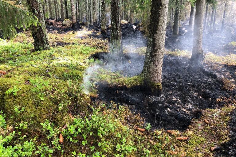 Under lördagen fick rök från naturvårdsbränningen i Stockmyr-Brännan personer att larma SOS.