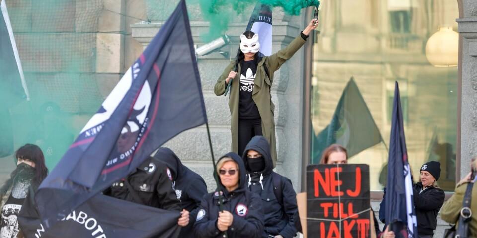 Maskerade djurrättsaktivister demonstrerar utanför riksdagen.