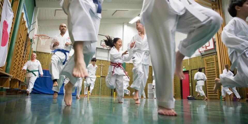 Simrishamns kommun delar årligen ut ett kulturpris, ett idrottspris och ett föreningsledarstipendium på 10 000 kronor vardera. Simrishamns karateklubb tilldelas årets idottspris. Arkivbild från Simrishamns karateklubbs dagläger förra våren.