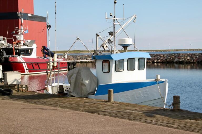 Under måndagen beslutade ministerrådet om Östersjöns fiskekvoter för 2021.