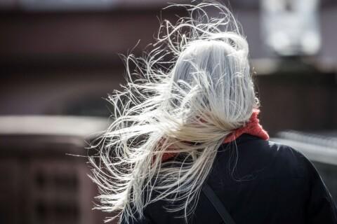 Väder: Blåsigt och risk för blötsnö