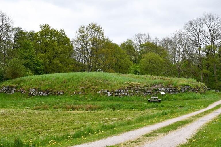 Kiviksbygdens historiska försvar