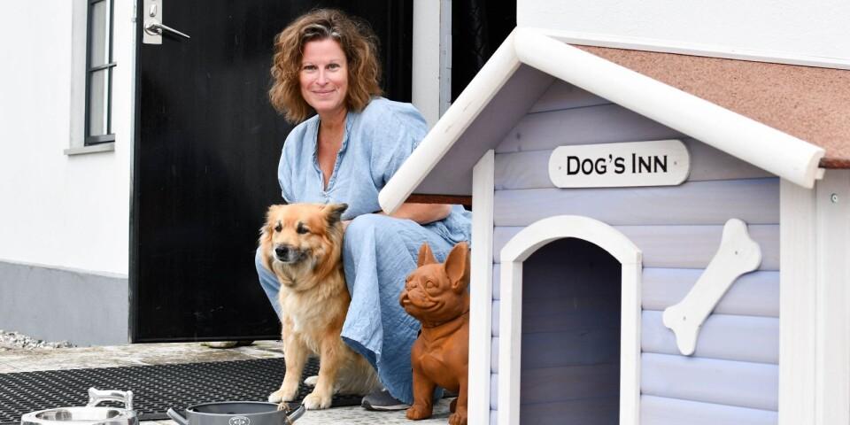 """""""Woof wear living har varit en fantastiskt rolig idé att förverkliga. Många av våra gäster har hund och det har varit full fart från start"""", berättar Maria Engström.  Reunion håller öppet varje dag hela sommaren, klockan 11-17."""
