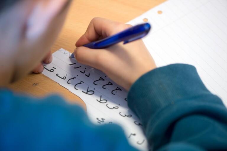 Vänstern överklagar policy för modersmålsundervisning