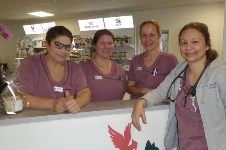 Veterinärklinikerna coronaanpassar verksamheten