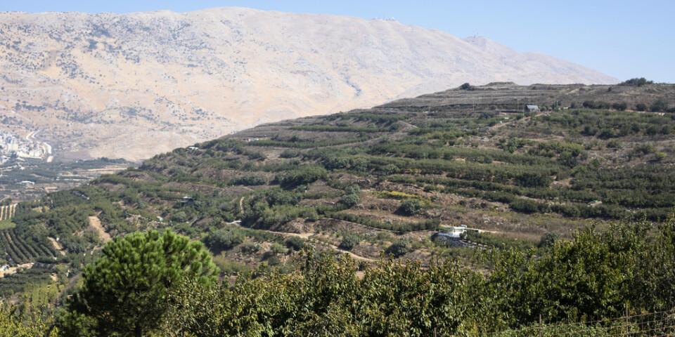 Robotarna uppges ha avlossats från de delar av Golanhöjderna som Israel kontrollerar. Arkivbild.