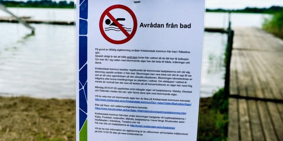 The municipality has put up signs like this to warn people not to bathe here.