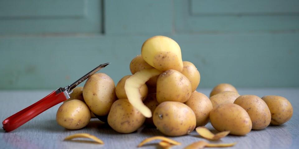 Skördar av Kalmar-potatis skulle kunna bli ännu större och mer kostnadseffektiva.