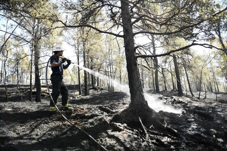 Daniel Stigenberg, från räddningstjänsten i Tyresö, eftersläcker en brand i ett större skogsområde i gränsområdet mellan Paradisets och Svartsjöns naturreservat i södra Stockholm.