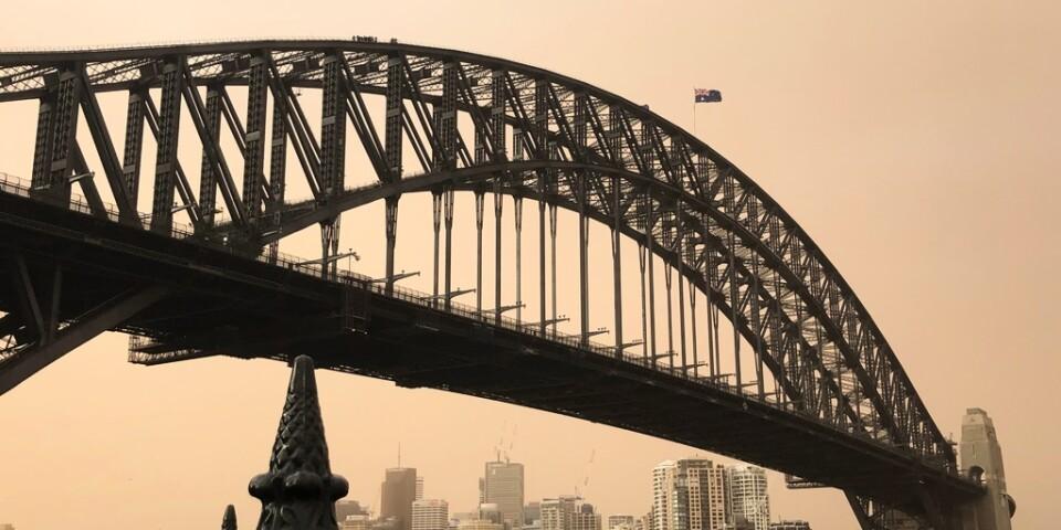Harbour Bridge i Sydney under tisdagen. Den farliga brandröken har sedan dess lättat från staden.