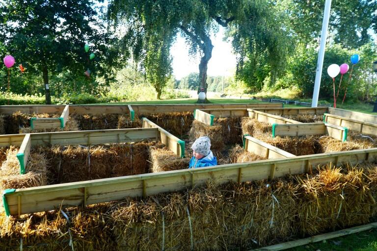 Alma Olausson testade labyrinten på invigningen av Öppna förskolan ur och skur i Bollebygd.