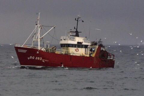 Insändare: Kalmar läns politiker måste driva på för hållbart fiske