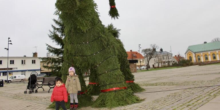 Nu är julgran och bocken på plats i Borgholm