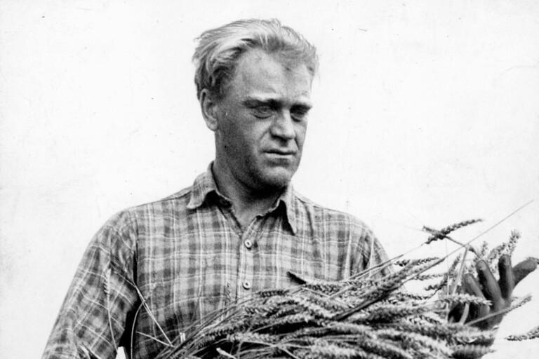"""Biografititeln """"Mannen i skogen"""" är vald från ett av Vilhelm Mobergs återkommande litterära teman: den ensamme starke mannen som går sin egen väg."""