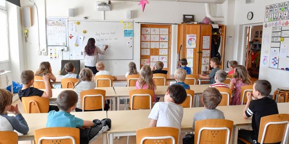 Eleverna i dagens svenska skola behöver få hjälp och stöd för att lära sig mer. skolverkets förslag att minska på exempelvis historieundervisningen får hård kritik av dagens debattör.