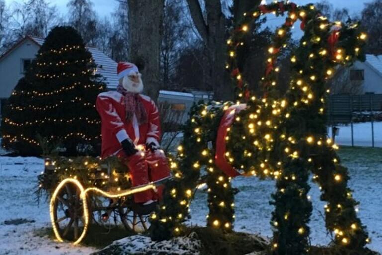 """Safari tre dagar innan julafton: """"Varit med sedan start"""""""