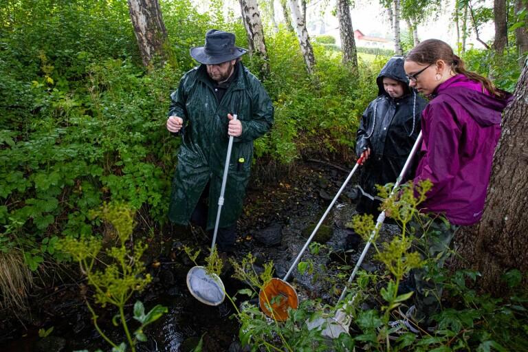 Bioblitz vill belysa de goda sidorna i Arkelstorpsviken