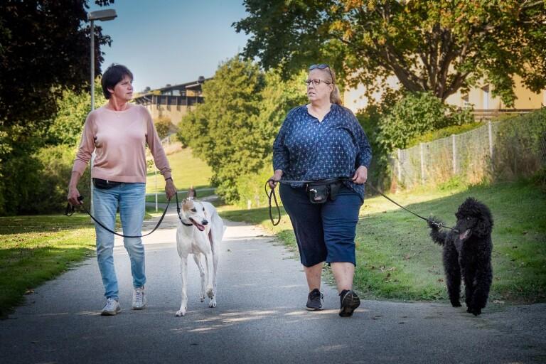 Medborgarförslag: En rastplats för större hundar