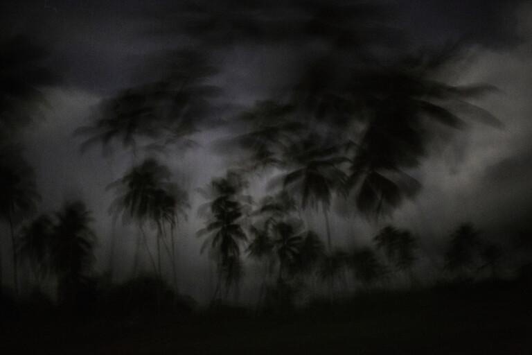 Berättelsen om sex pojkar som en juninatt 1965 kravlar i land på en öde ö i Stilla havet blir långfilm. Genrebild.