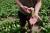 Utredning ska visa – så stora viltskador måste lantbruket tåla