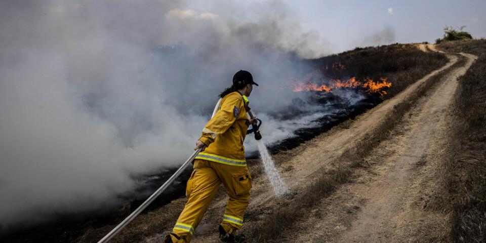 En israelisk brandman släcker en brand som orsakats av brandbomber som svävat in med hjälp av ballonger från Gazaremsan .
