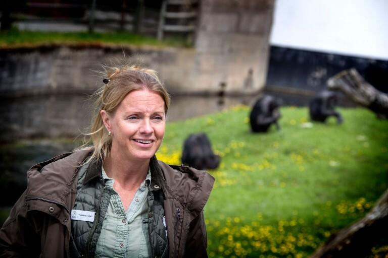 TV: Här leker djurparkens senaste tillskott – en noshörningsunge