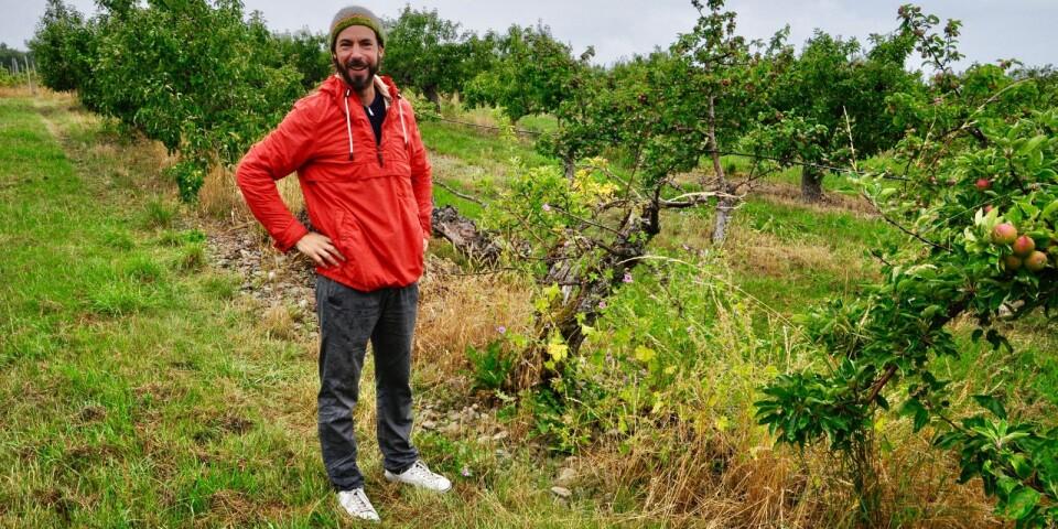 För tre år sedan köpte Diego Vegas Skoglund en gård med äppelodling och sju hektar mark vid foten av Stenshuvud som han döpte till Östersken. Han hade arbetat inom internationellt bankväsende i många år men tröttnade och ville hoppa av ekorrhjulet.