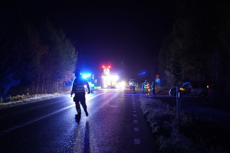 Stopp i trafiken efter viltolycka