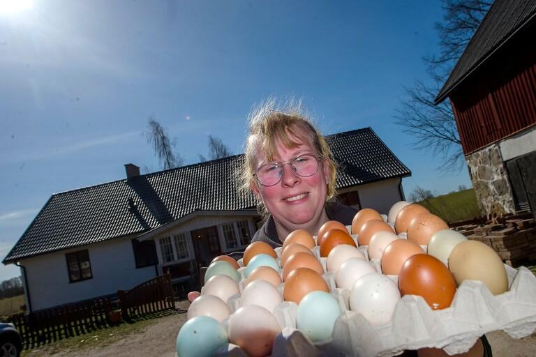 Skillnaden mellan äggen — det här betyder märkningarna