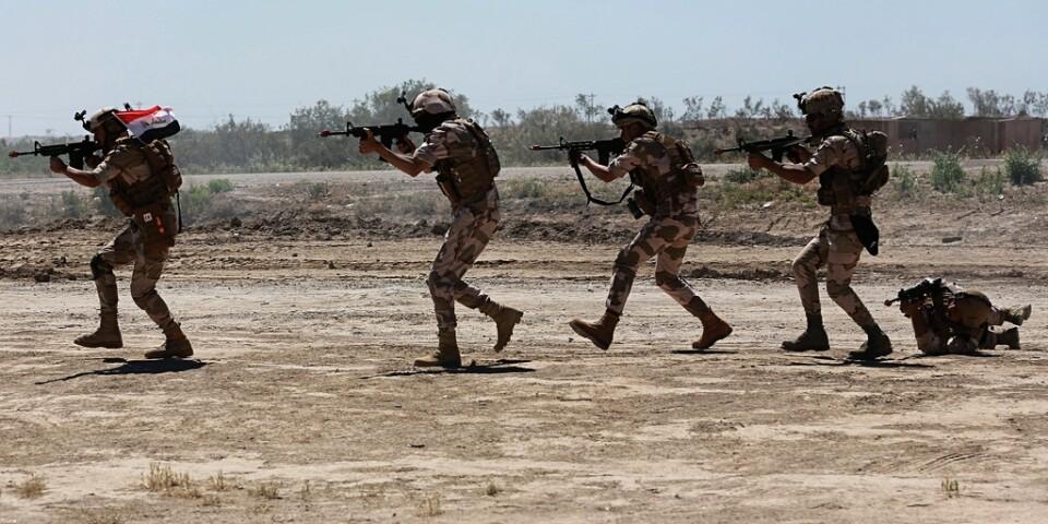 Soldater från Australien och Nya Zeeland i en träningsaktion med irakisk militär. Arkivbild.