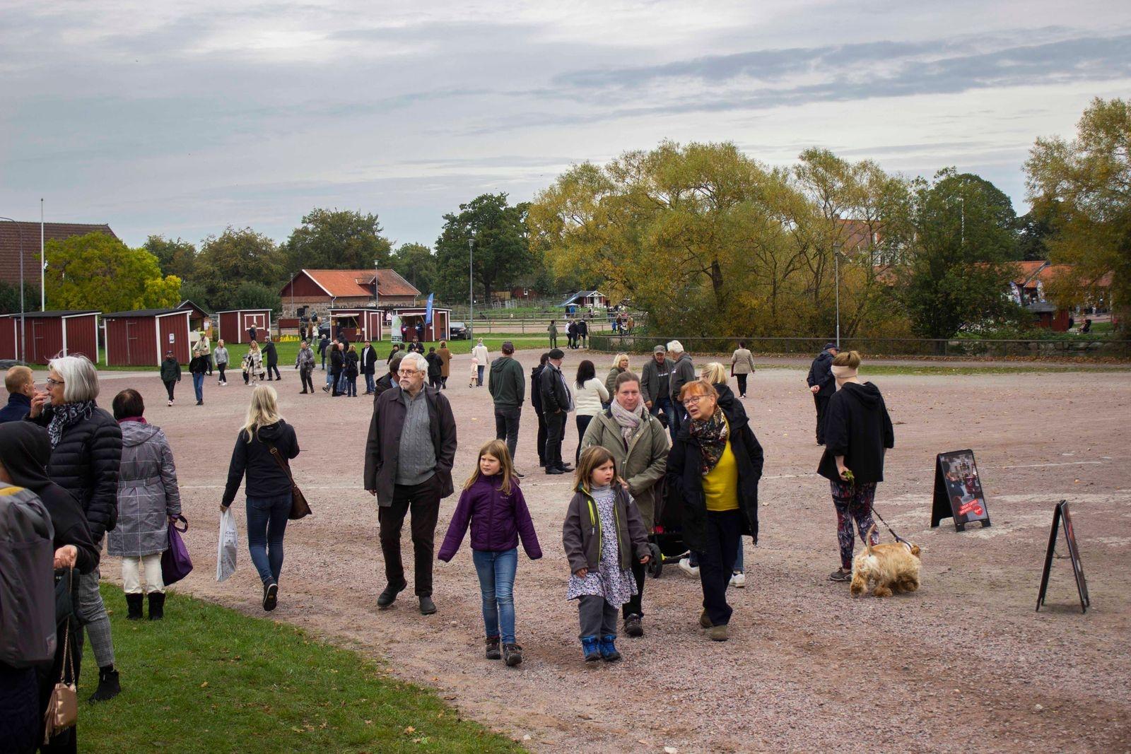 Skälby 4H-gård fick ett lyckat 50-årskalas med många besökare.