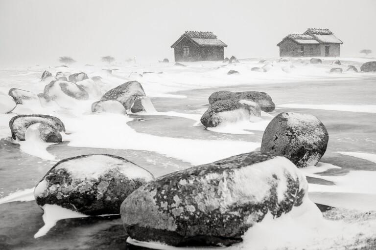 Årets Ölandsfotograf 2019
