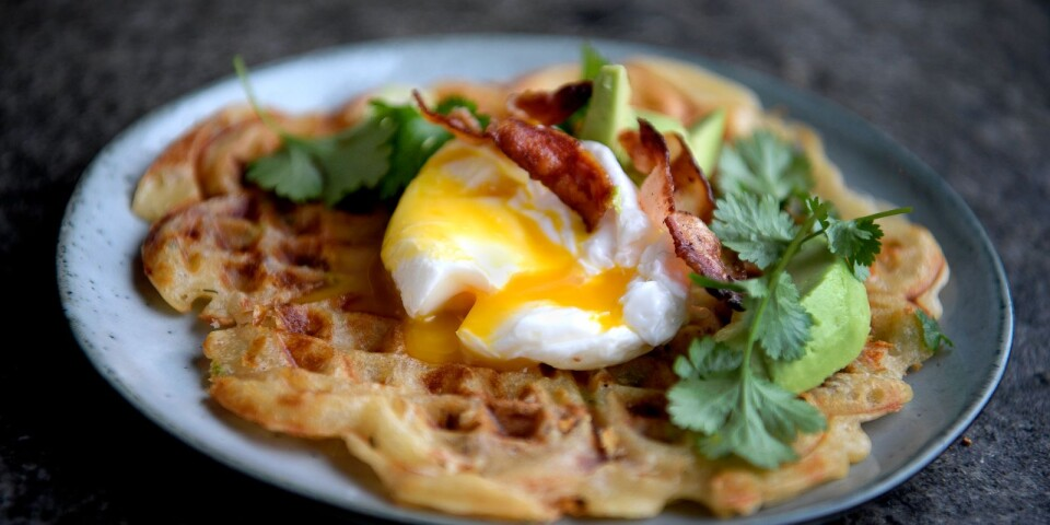 Waffles with all the extras. Here with crispy bacon, cheese and chili, served with poached egg, avocado and coriander.