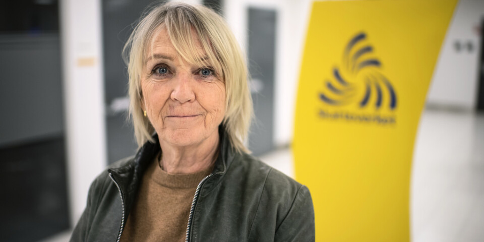 Pia Bergman, expert på ekonomisk brottslighet vid Skatteverket. Arkivbild.