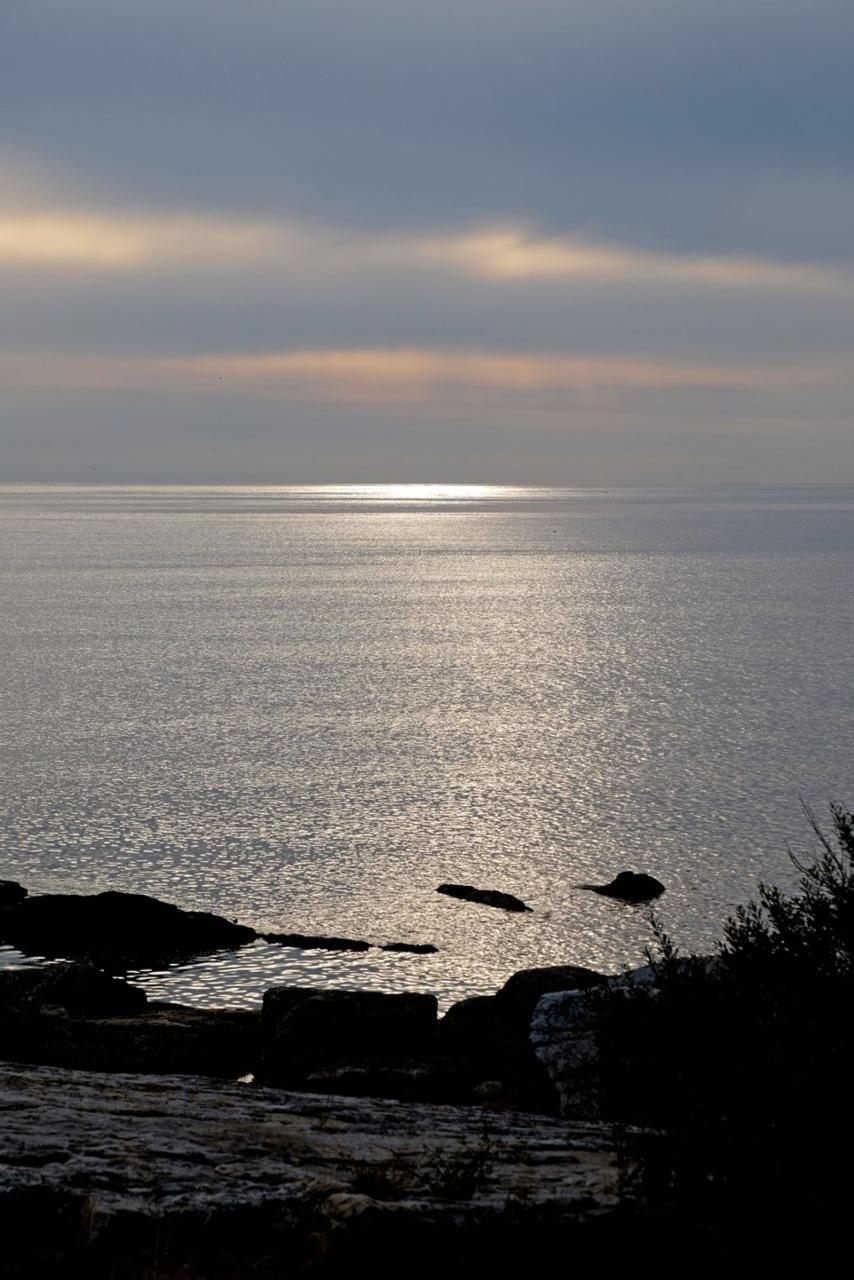 Ljuset på Österlen är faktiskt så speciellt som alla säger, intygar Lena Måndotter, som har sett många andra platser i världen.