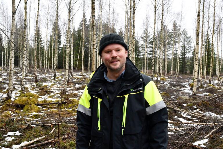 Skogskonsulent Martin Sallnäs framför ett bestånd med björk som har röjts och gallrats så att träden har kunnat växa raka och kraftiga.