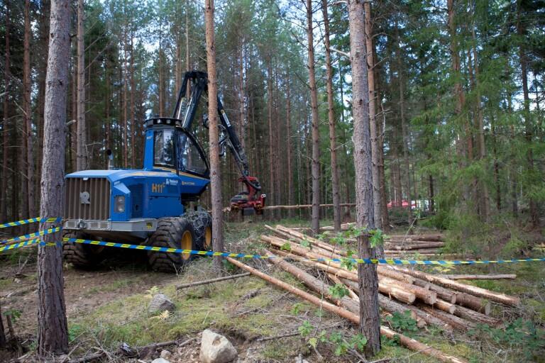 Skog och miljö i fokus på mässa