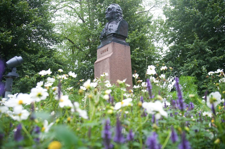 Kravet: Ta bort statyer av Carl von Linné