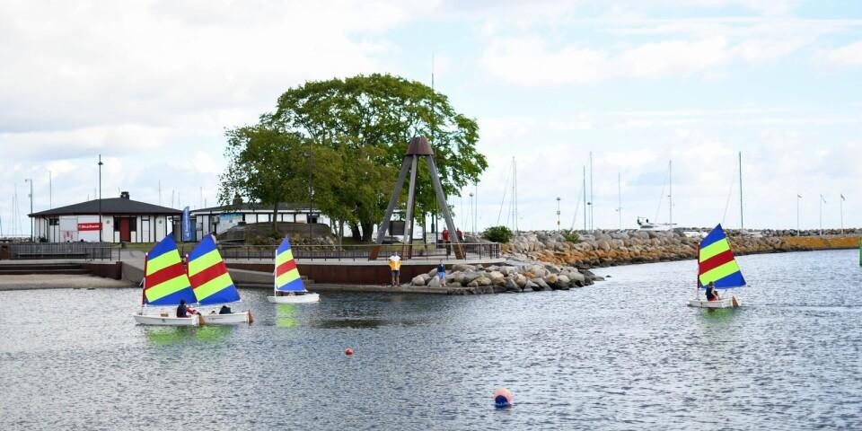 """Simrishamns segelsällskap betraktar seglarskolan som en investering för framtiden och trots ett högt tryck har man valt att hålla nere antalet deltagare i grupperna. """"Vårt främsta syfte med seglarskolan är att sprida kunskapen om segling, det känns angeläget för återväxten och båtlivets skull"""" säger Andreas Eldh Emilsson."""