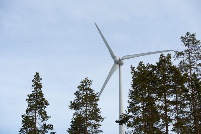 """Nya vindkraftsplaner i Bråbotrakten: """"Det blir en ren nystart"""""""