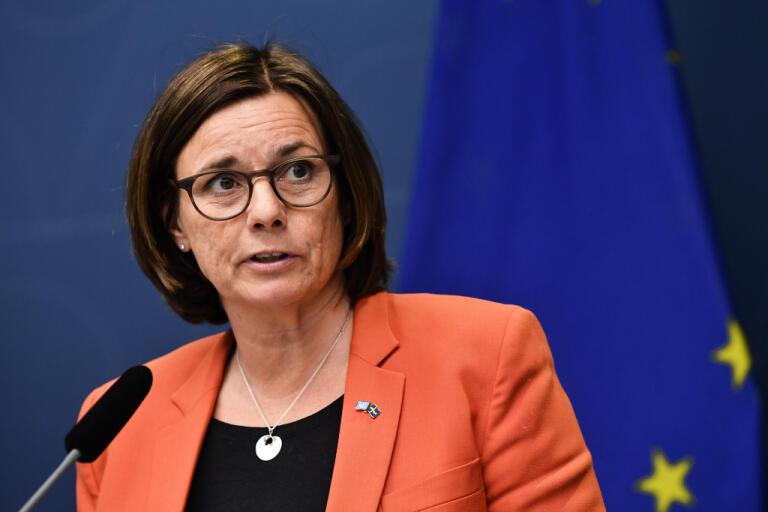 """De här 100 miljonerna kommer att vara ett viktigt tillskott för organisationer ska kunna växla upp sitt arbete"""", säger cice statsminister Isabella Lövin (MP)."""