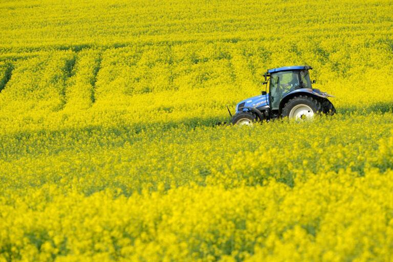 Svenska bönder vill producera mat, energi och biologisk mångfald. Våra odlingsförhållanden gör att mycket av det konsumenterna efterfrågar av till exempel olika bönor bara kan odlas på små arealer och därtill kräver flera års uppehåll för att inte de inte ska få sjukdomar, konstaterar Björn Larsson.