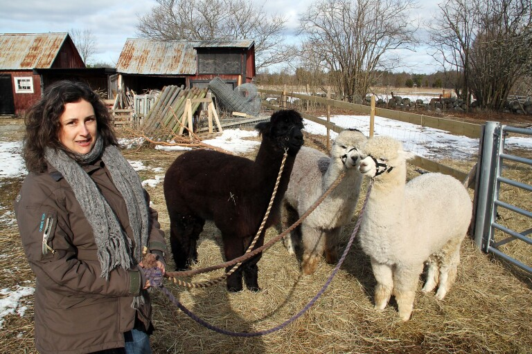 5 udda djur som finns på Öland