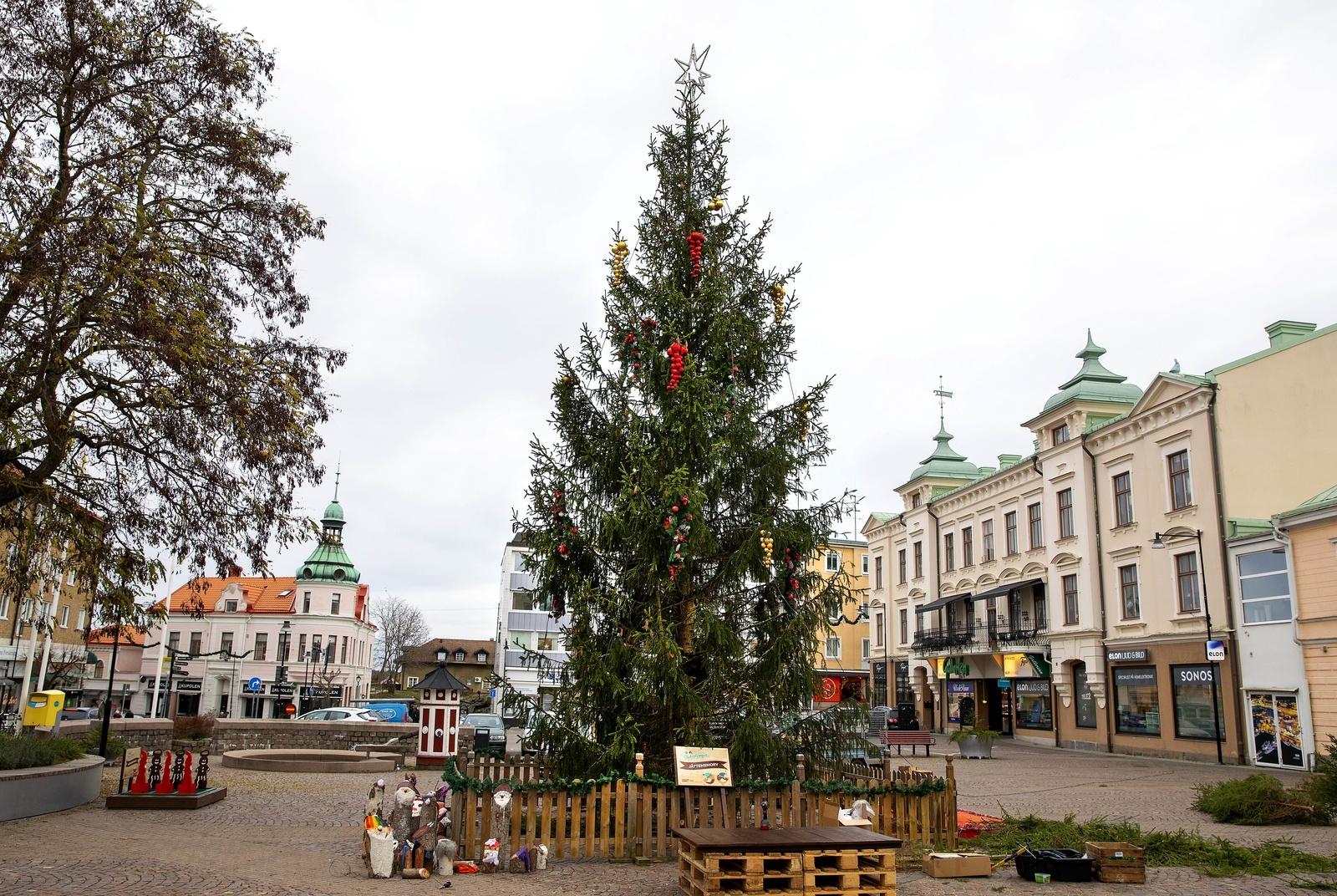 OSKARSHAMN: Granen på Lilla torget i Oskarshamn är en vanlig skogsgran, huggen på kommunens mark i Djurhult.